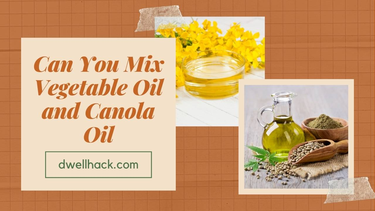 Can You Mix Vegetable Oil and Canola Oil