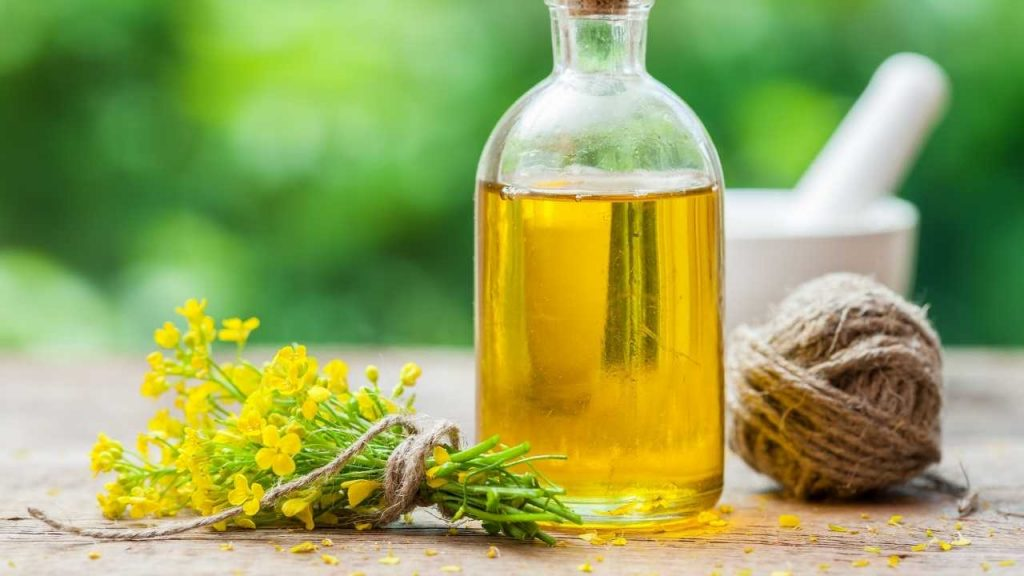 Can You Mix Vegetable Oil and Canola Oil: Is It Good for Heart? 2