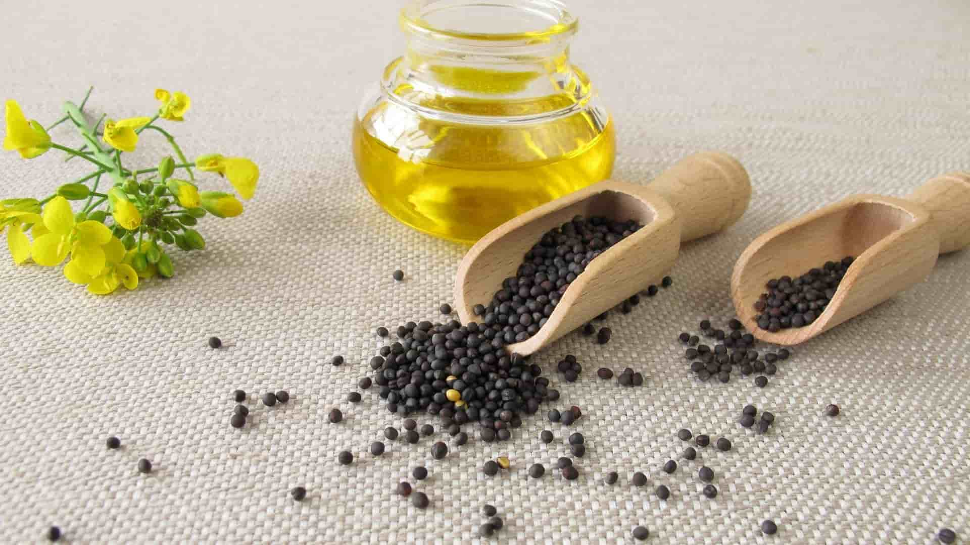Can You Deep Fry with Canola Oil? Let's explore - Dwell Hack 1